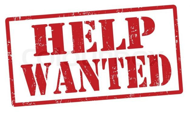 Caregiver / companion wanted