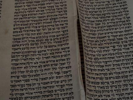 Help save the Dunedin Torah