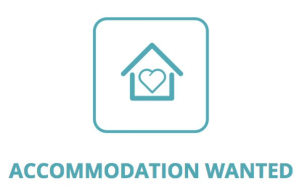 C'mon Chevra – Please help me with Accommodation