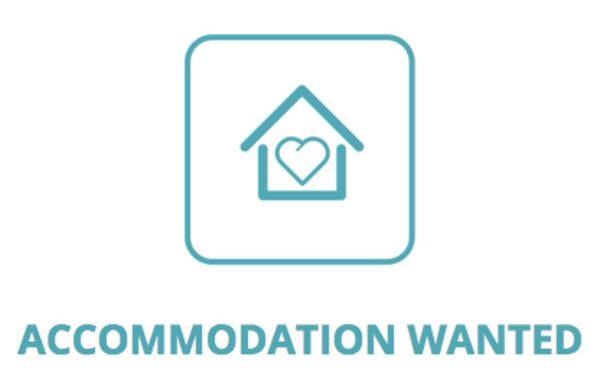 Accommodation wanted…