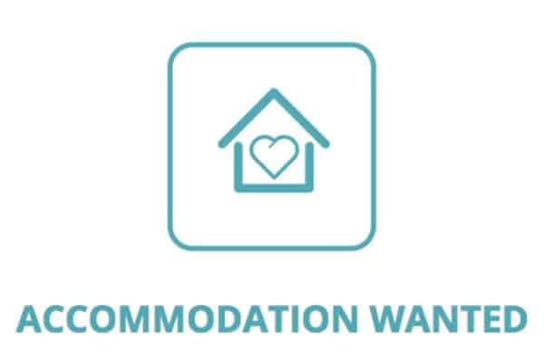 Accommodation wanted!
